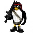 Установка сервера Counter-Strike 1.6 на Linux, Centos
